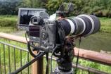 Xperia ZL2 SOL25 auで撮影した写真