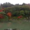 Xperia SX SO-05D docomoで撮影した写真