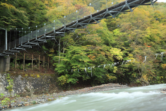 中津川峡20101031の紅葉加減3