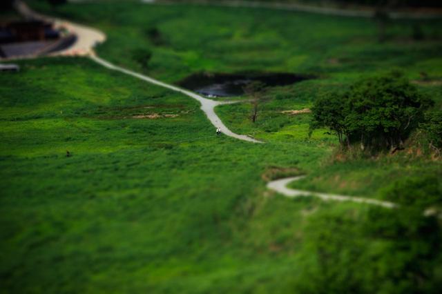 『ノルウェイの森』ロケ地の砥峰高原ジオラマ風