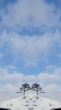 OLYMPUS STYLUS TG-3 Toughで撮影した写真