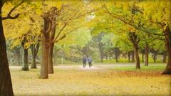 47年目の秋