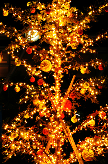 tree。