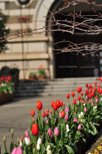 春はすぐそこに。