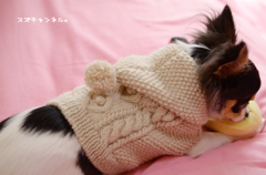 フーテッドセーター、バックスタイル。