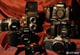 Ai AF Nikkor 50mm f/1.4Dで撮影した写真