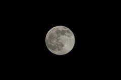 初めての月