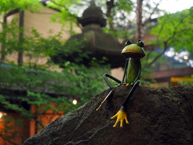 蛙が住む庭園。