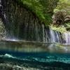 Nikon 1 AW1 防水ズームレンズキットで撮影した写真