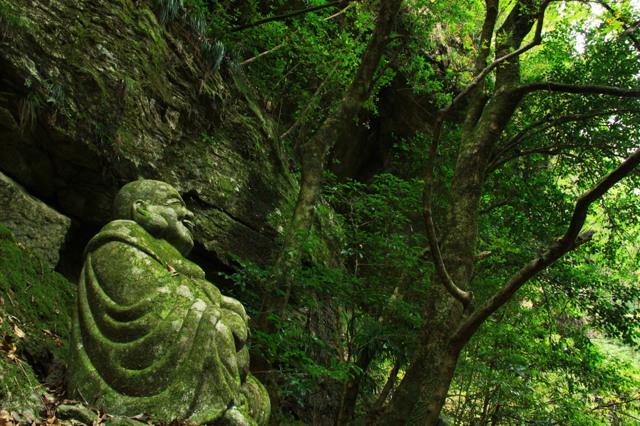 森林の守護者。