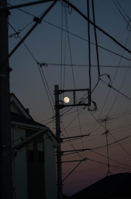 月を囲いの中に入れてみた