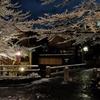FUJIFILM XQ2で撮影した写真