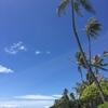 iPhone 6 16GB auで撮影した写真