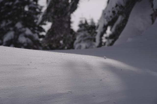穂高の冬越