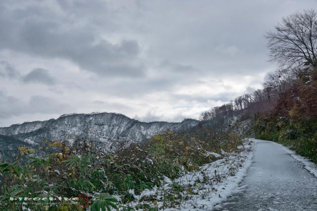 冬が近づく道