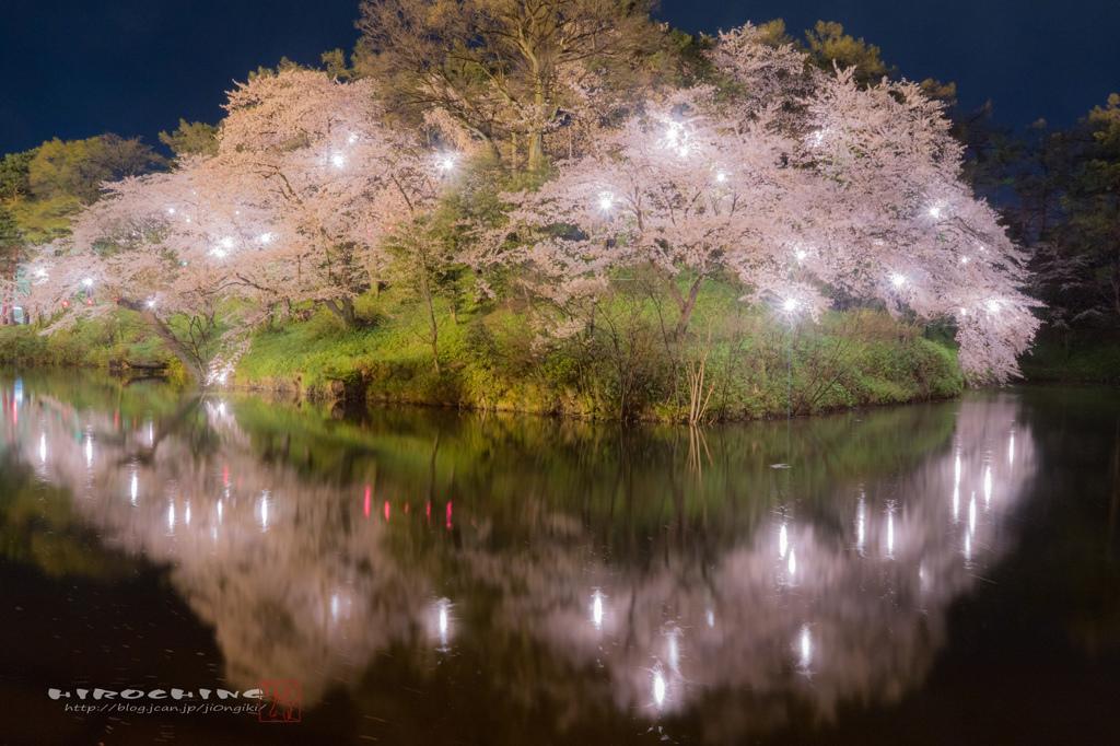 桜ship 2015