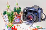 HD PENTAX-DA 35mmF2.8 Macro Limited [ブラック]で撮影した写真