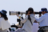EF300mm F2.8L IS II USM�ŎB�e�����ʐ^