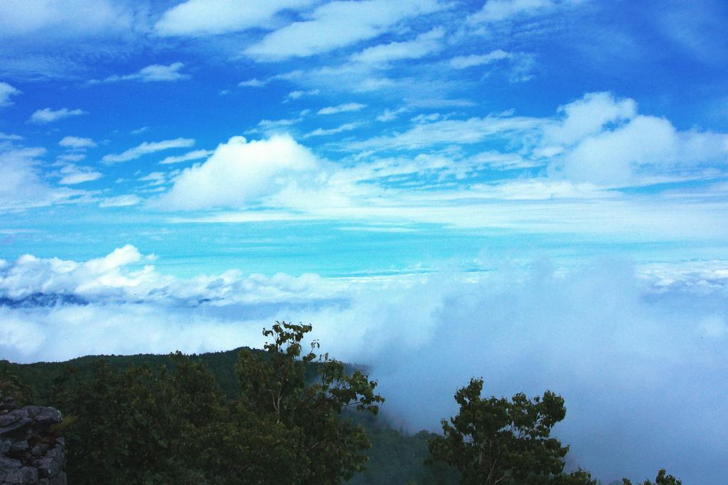 雲海の波濤