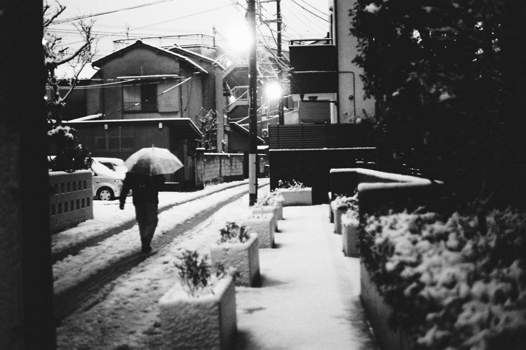 VITESSA試写 #4 -東京積雪-
