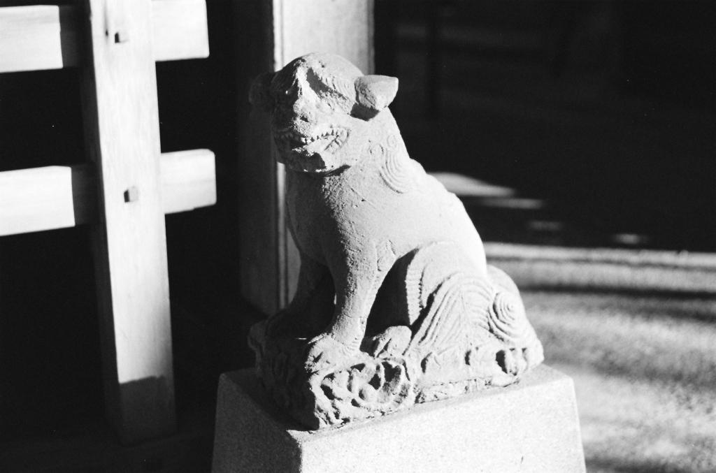 北千住・氷川神社(狛犬)