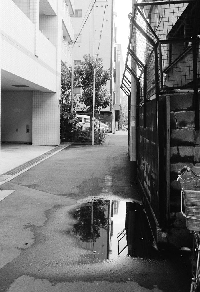 Asakusa #6