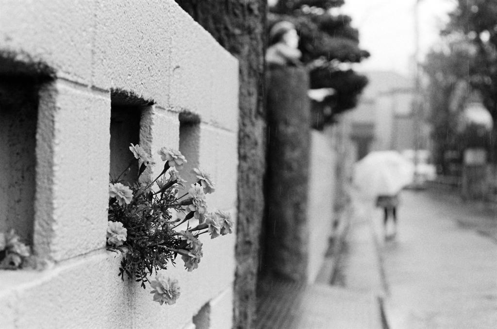 雨の日 #2