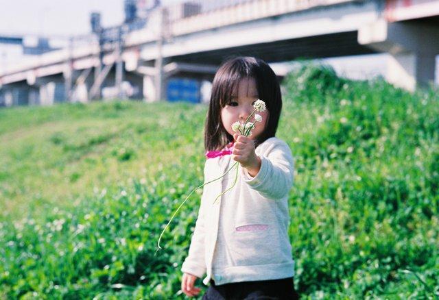 VOIGTLANDER(フォクトレンダー)のカメラ Bessa-R2Aで撮影した人物(花摘み)の写真(画像)