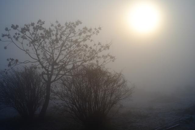 濃霧の画像(写真)