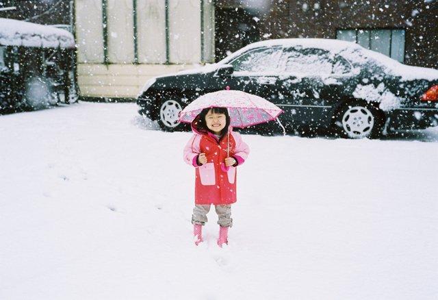 東京大雪の画像(写真)