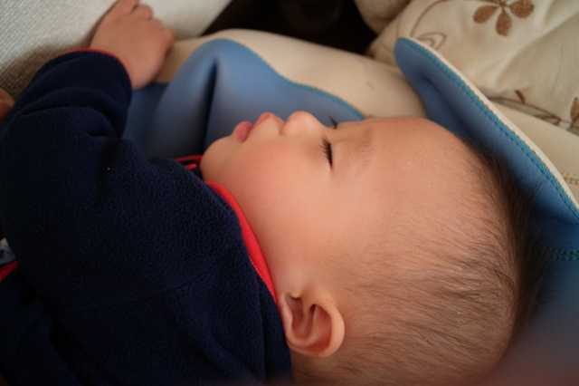 寝顔の画像(写真)
