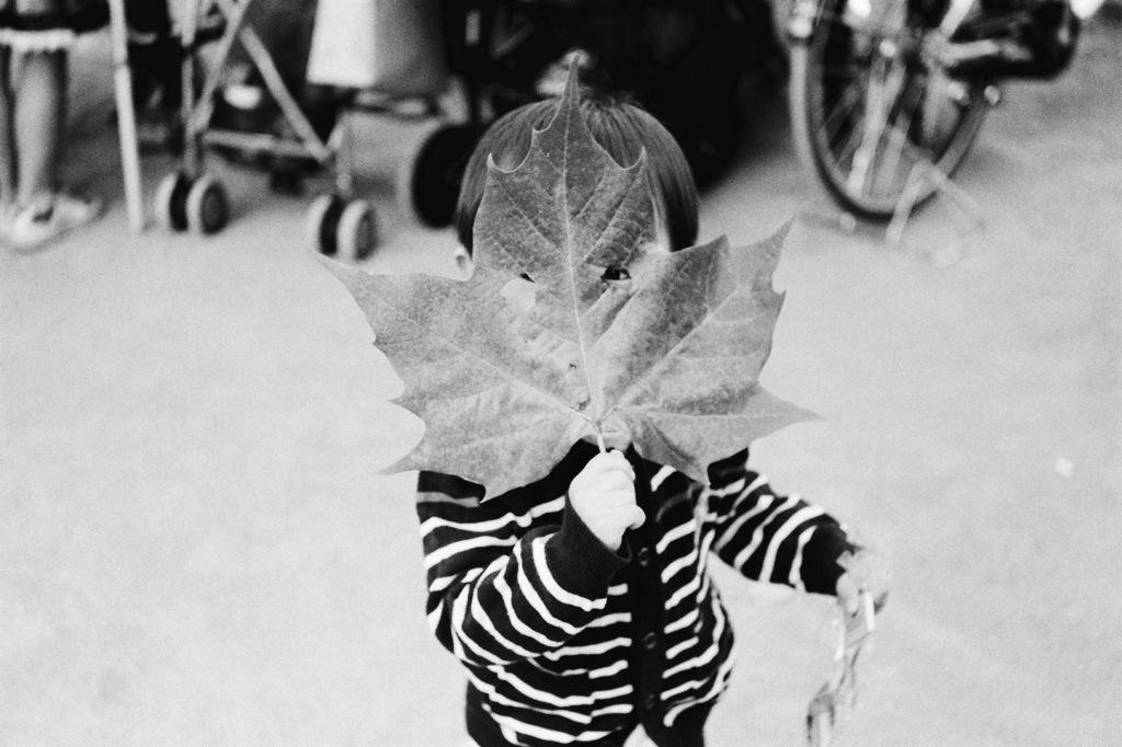 葉っぱ仮面、参上!
