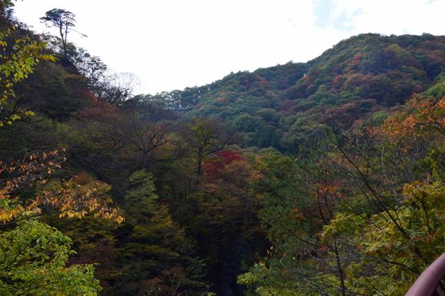 吾妻渓谷の紅葉 その3
