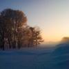 iPhone 3G 16GB SoftBankで撮影した写真