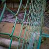 ボディーキャップレンズ BCL-1580 [シルバー]で撮影した写真