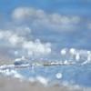 α NEX-5TL パワーズームレンズキットで撮影した写真