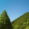FREETEL SAMURAI MIYABI SIMフリーで撮影した写真