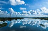 OLYMPUS OM-D E-M5 ボディ [シルバー]で撮影した写真