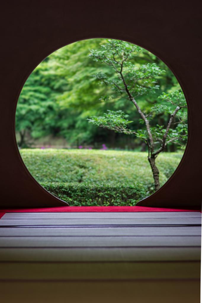 明月院円窓 縦構図