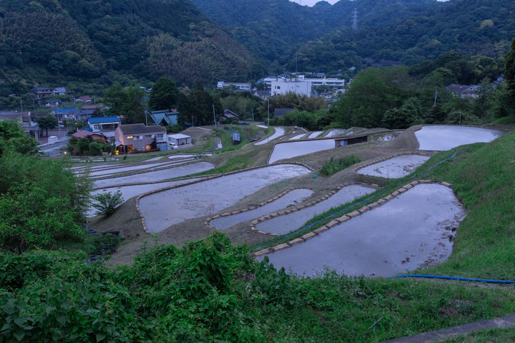 葉山の棚田