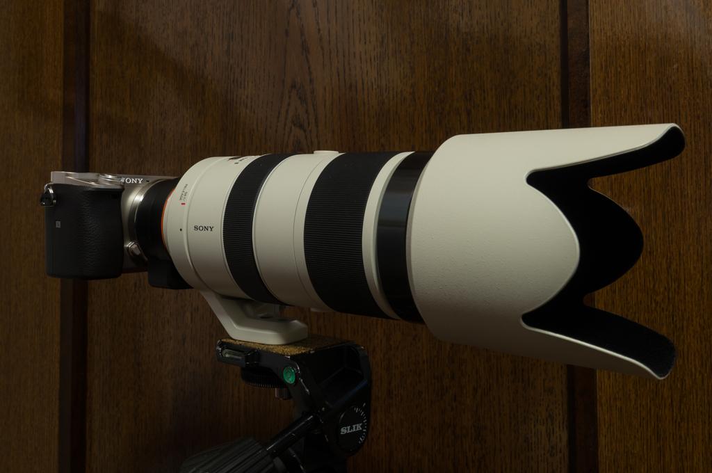 70-400mm F4-5.6 G SSMII + α6000