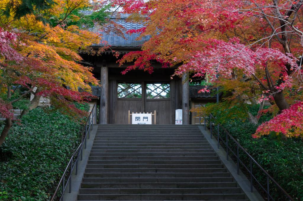 円覚寺 開門前