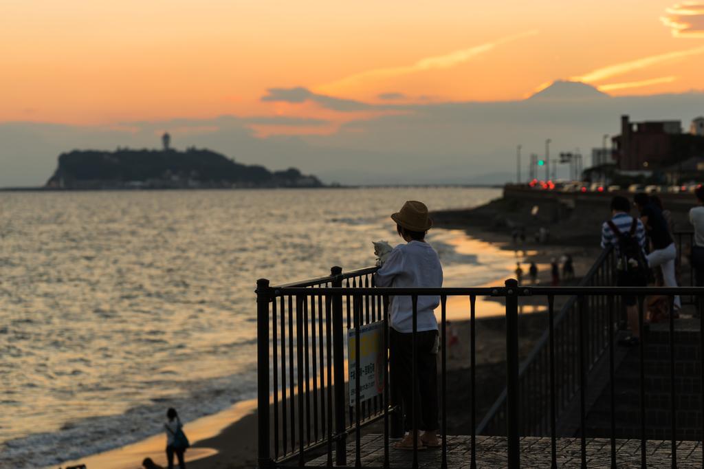 愛犬と共に江ノ島を眺める