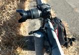 Moto G4 Plus SIMフリーで撮影した写真