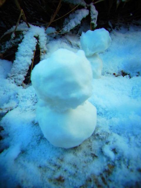 11月の雪だるま