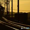 D3200 ボディ [ブラック]で撮影した写真