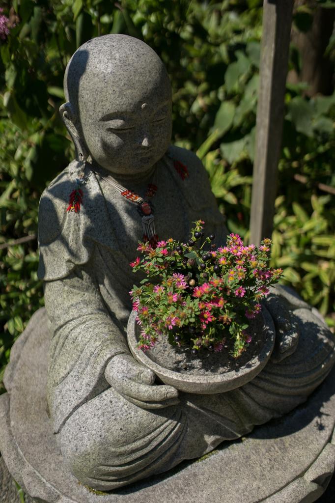 明月院 花地蔵