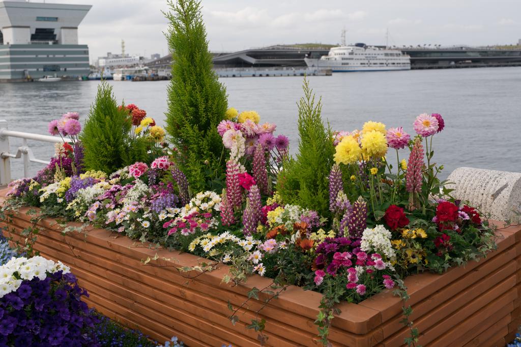 山下公園 花と客船