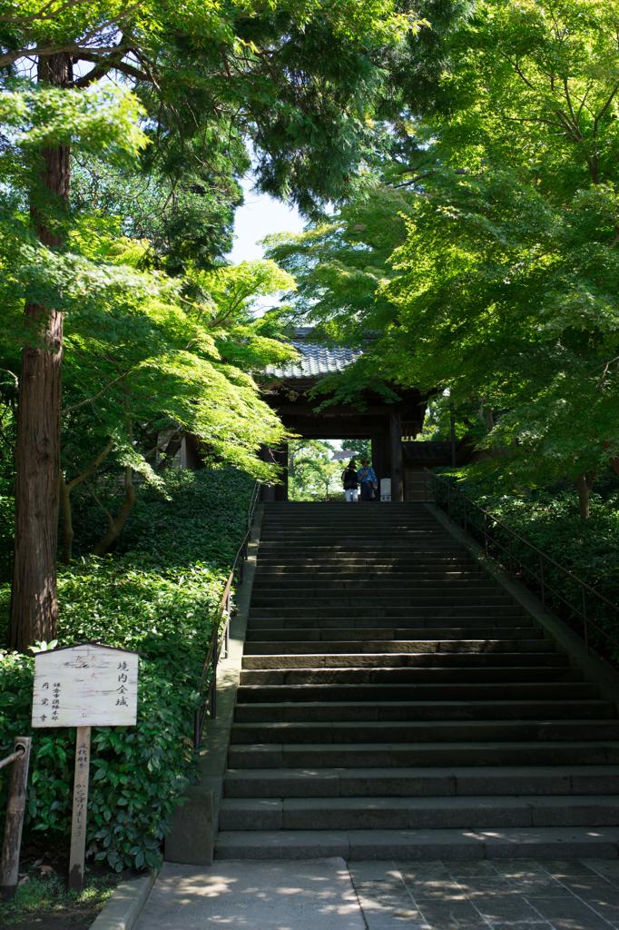 円覚寺階段