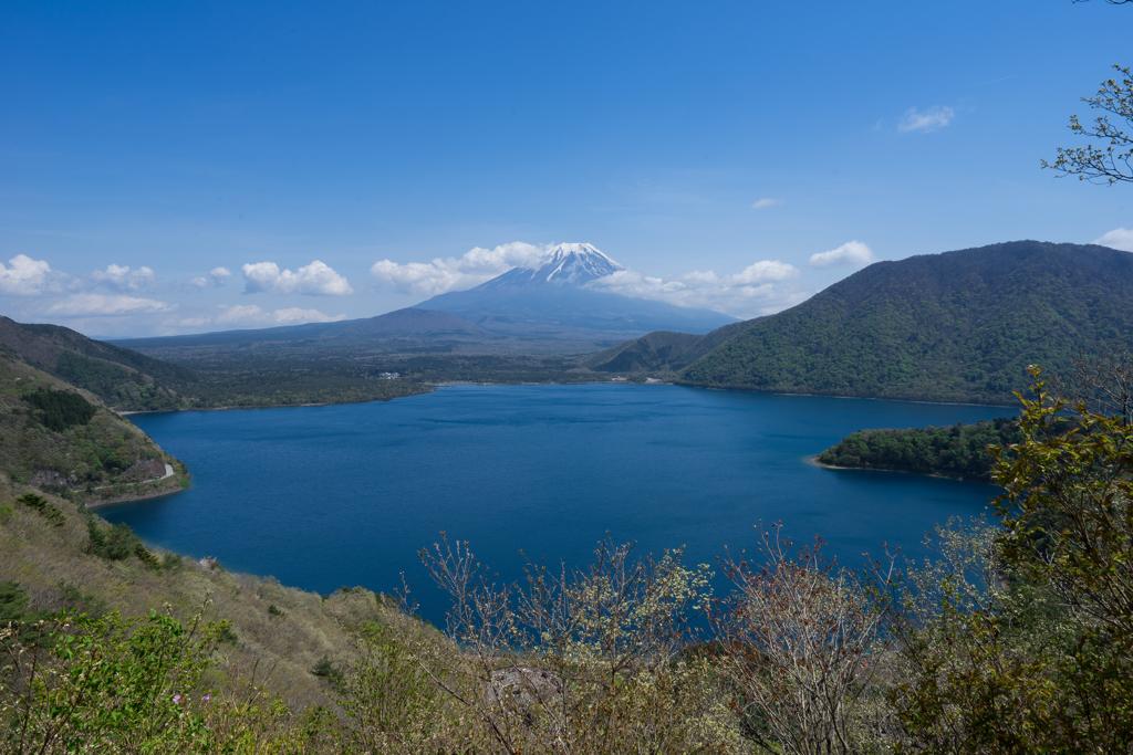 展望台からの本栖湖